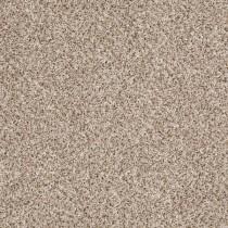 Navigator - Sand Swept