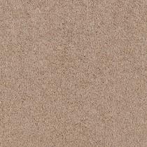 SPEEDWAY - CAMEL COAT